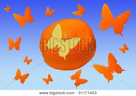 Orange And Butterflies Against The Sky