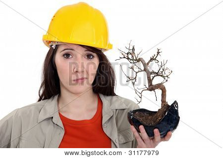 A female construction worker holding a dead plant.