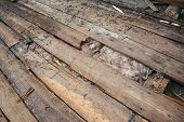 Old Roof Repair And Renovation. Old House Roof With Bad Wet Wooden Beams And  Wet Roock Wool Insulat poster