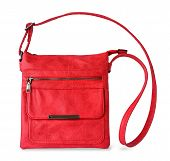 Small Red Casual Handbag With A Long Handle And A Zip Fastener. Fashionable Modern Accessories Made  poster