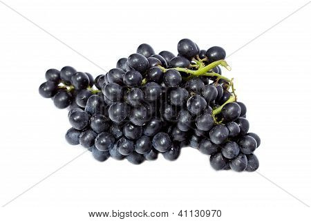 Fresh Black Grapes Isolated On White Background