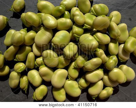 Raw broad beans.