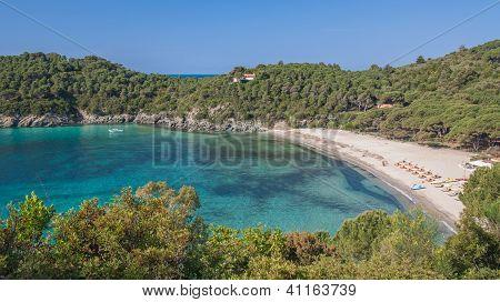 Fetovaia Beach, Elba Island,Tuscany,Italy