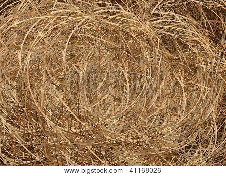 A Big Brown Haybale Roll Background Texture
