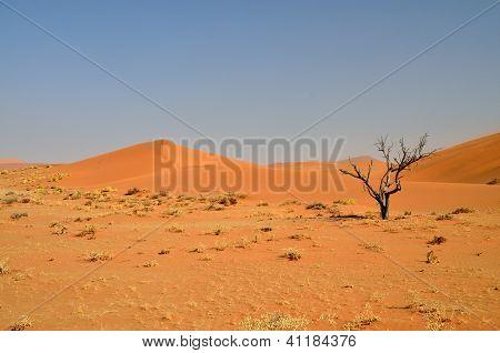 Red desert landscape of Namibia