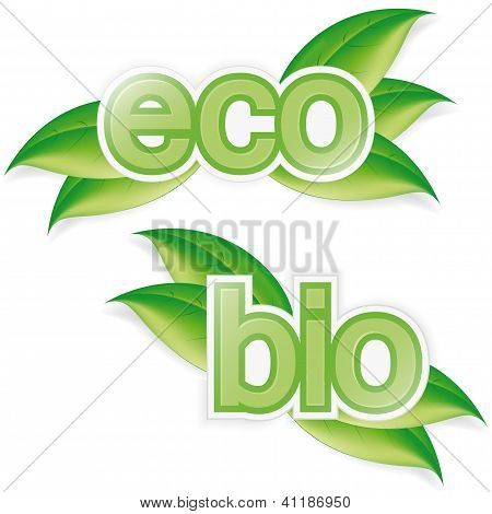 Eco And Bio Label