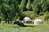 stock photo of yurt  - The yurt is the housing of the nomads - JPG