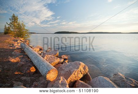 Unattended Old Log Lying On The Coast Of Saimaa Lake In Finland