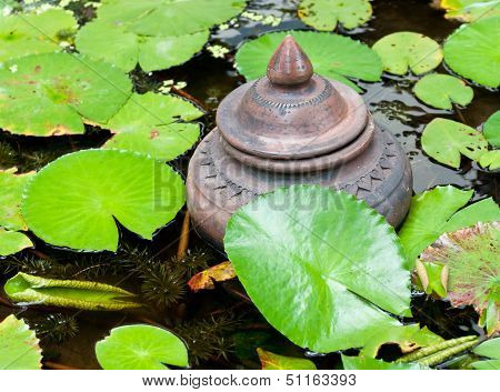 Jar In The The Lotus Pound.