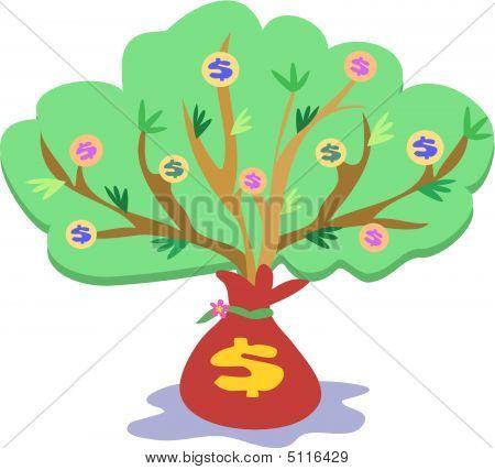 Money Tree Growth