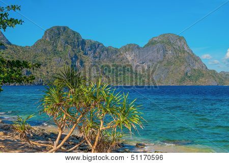 Scenic Sea Shore With Mountains