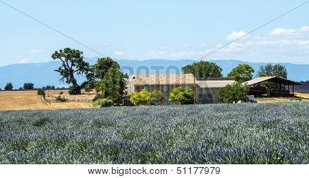 Plateau De Valensole (provence), House