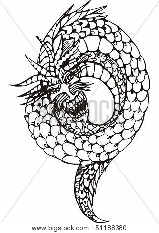 Oriental Legless Dragon Worm