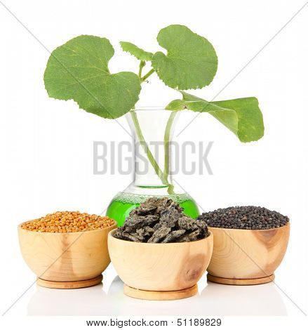 Conceptual photo of bio fuel.  Isolated on white