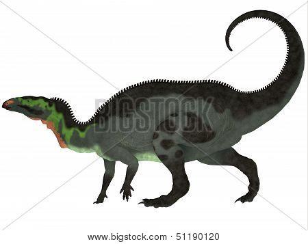 Camptosaurus Profile