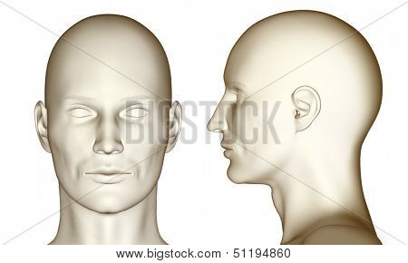 3D man heads (fullfaced and profile) isolated on white background.