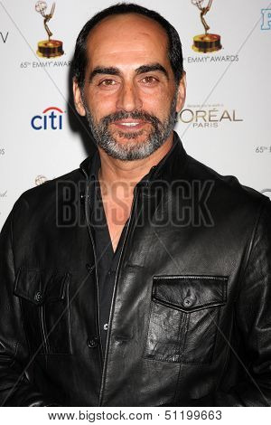 LOS ANGELES - SEP 20:  Navid Negahban at the Emmys Performers Nominee Reception at  Pacific Design Center on September 20, 2013 in West Hollywood, CA