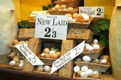 stock photo of grocery store  - english eggs for sale in an old fashioned store window - JPG