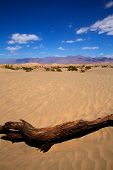 stock photo of mesquite  - Mesquite Dunes desert in Death Valley National Park California - JPG