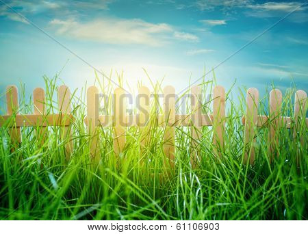 Garden grass and wooden fence on blue sky background