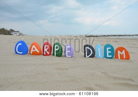 Carpe Diem concept on colourful stones