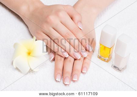Woman In A Nail Salon Receiving Manicure