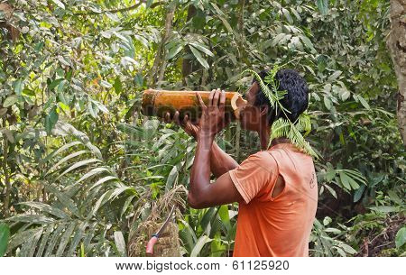 Local Man Drinks Water From A Bamboo In The Jungle