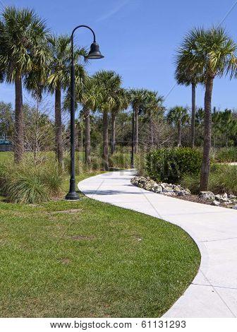 Scenic Path Through Park