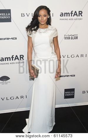 NEW YORK-FEB 5: Model Selita Ebanks attends the 2014 amfAR New York Gala at Cipriani Wall Street on February 5, 2014 in New York City.