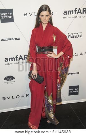 NEW YORK-FEB 5: Model Jeisa Chiminazzo attends the 2014 amfAR New York Gala at Cipriani Wall Street on February 5, 2014 in New York City.