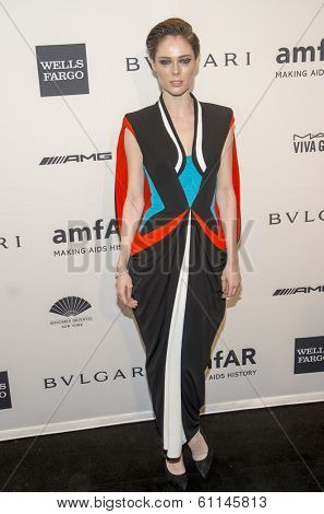 NEW YORK-FEB 5: Model Coco Rocha attends the 2014 amfAR New York Gala at Cipriani Wall Street on February 5, 2014 in New York City.
