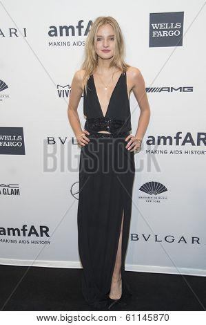 NEW YORK-FEB 5: Model Amanda Norgaard attends the 2014 amfAR New York Gala at Cipriani Wall Street on February 5, 2014 in New York City.