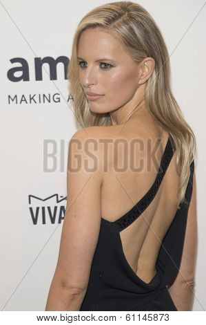 NEW YORK-FEB 5: Model Karolina Kurkova attends the 2014 amfAR New York Gala at Cipriani Wall Street on February 5, 2014 in New York City.