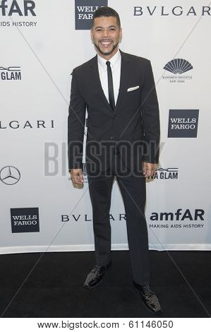 NEW YORK-FEB 5: Actor Wilson Cruz attends the 2014 amfAR New York Gala at Cipriani Wall Street on February 5, 2014 in New York City.