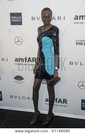 NEW YORK-FEB 5: Model Alek Wek attends the 2014 amfAR New York Gala at Cipriani Wall Street on February 5, 2014 in New York City.