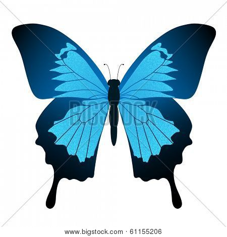 Illustration Blue butterfly isolated on white background. Papilio Ulysses.