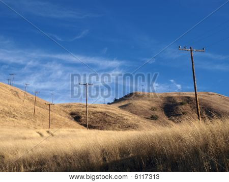 Grasslands And Phone Poles