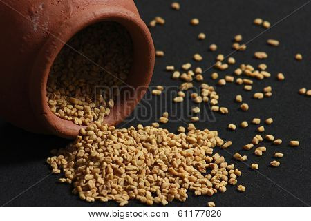 Fenugreek seeds or Methi seeds