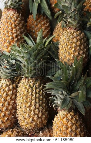 Pineapple or Ananas
