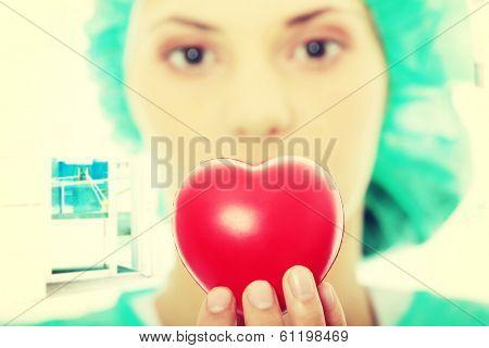 Cardiologist holding heart - focus on heart
