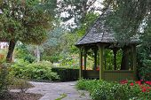 stock photo of gazebo  - Wooden gazebo surrounded by colorful fall foliage in Toronto park - JPG