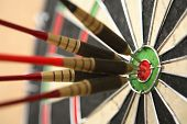 picture of bullseye  - Five darts hitting bullseye on dartboard - JPG