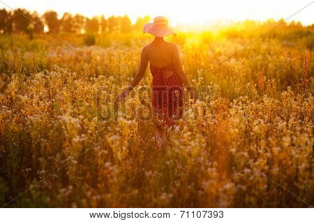 Girl Of Wildflowers On A Summer Evening