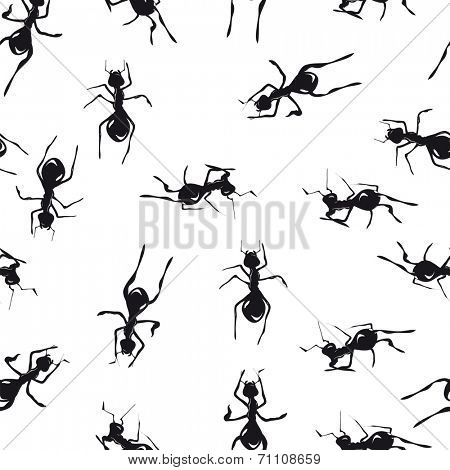 Seamless pattern with cute black ants an white background