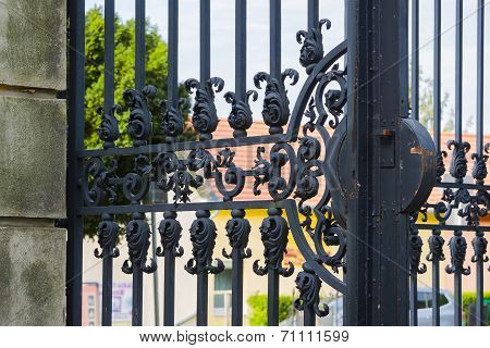Old metal iron gate.