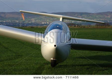 Glider Nose