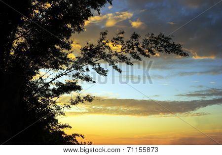 Sunlight From Sunrise In The Morning