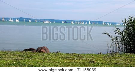 Lake Balaton In Summer, Hungary