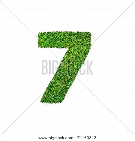 A Grass Seven 7 Isolated On A White Background