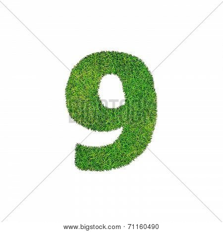 A Grass Nine 9 Isolated On A White Background